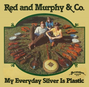 My Everyday Silver Is Plastic